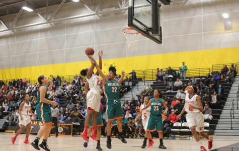 Girls Basketball Continues to Succeed