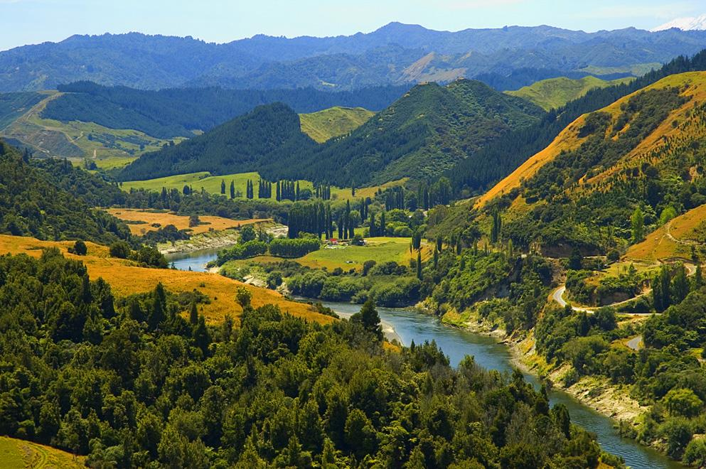 The Whangnui River in New Zealand