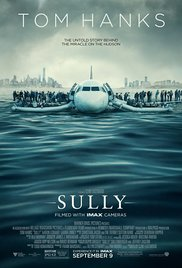 Diving Into Captain Sully's Daring Plunge