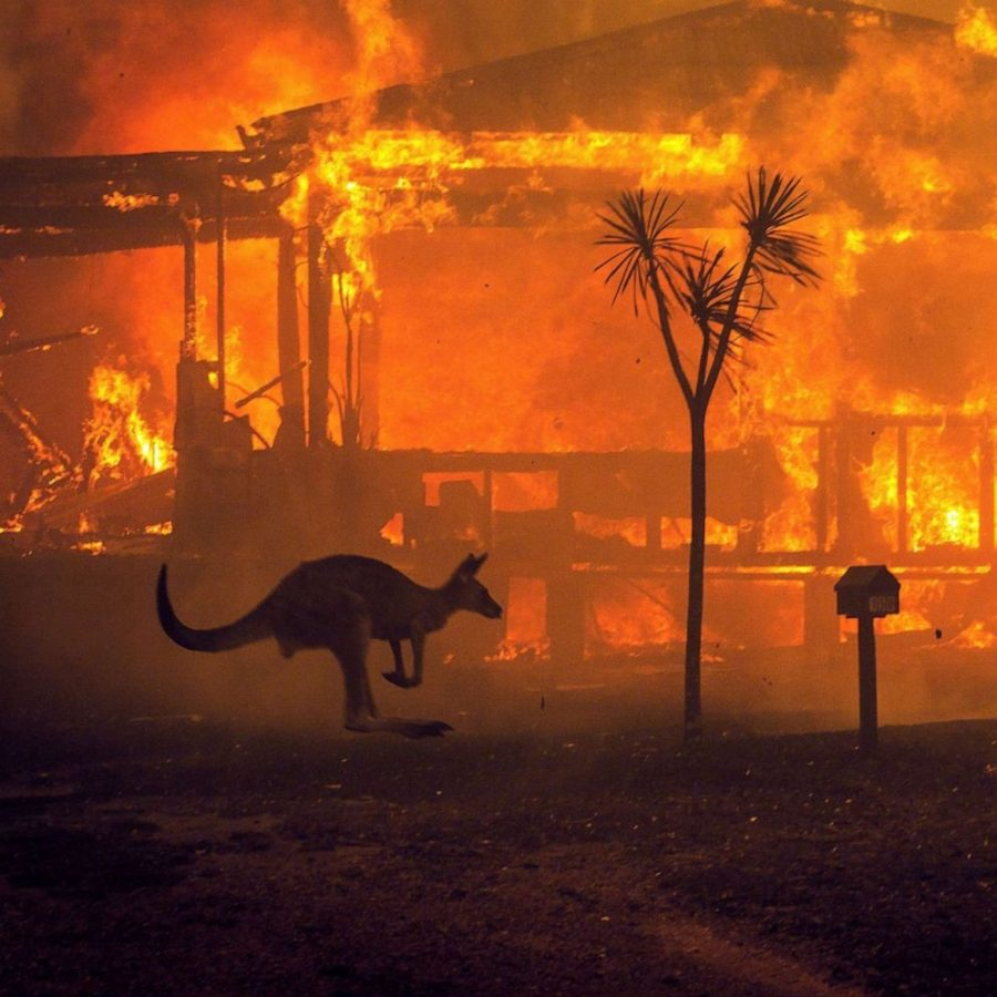 The 2019-2020 Bush Fires in Australia